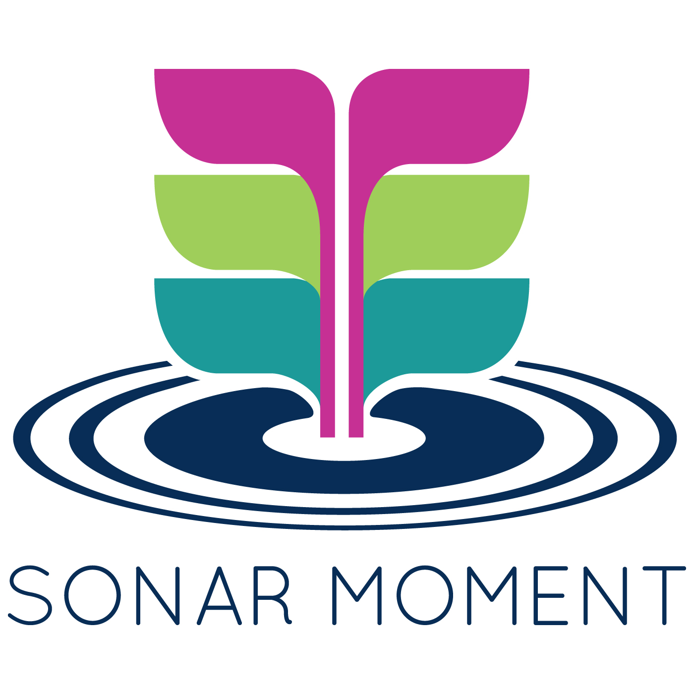 Sonar Moment - Reflections on leadership from CEOs in the Pacific Northwest