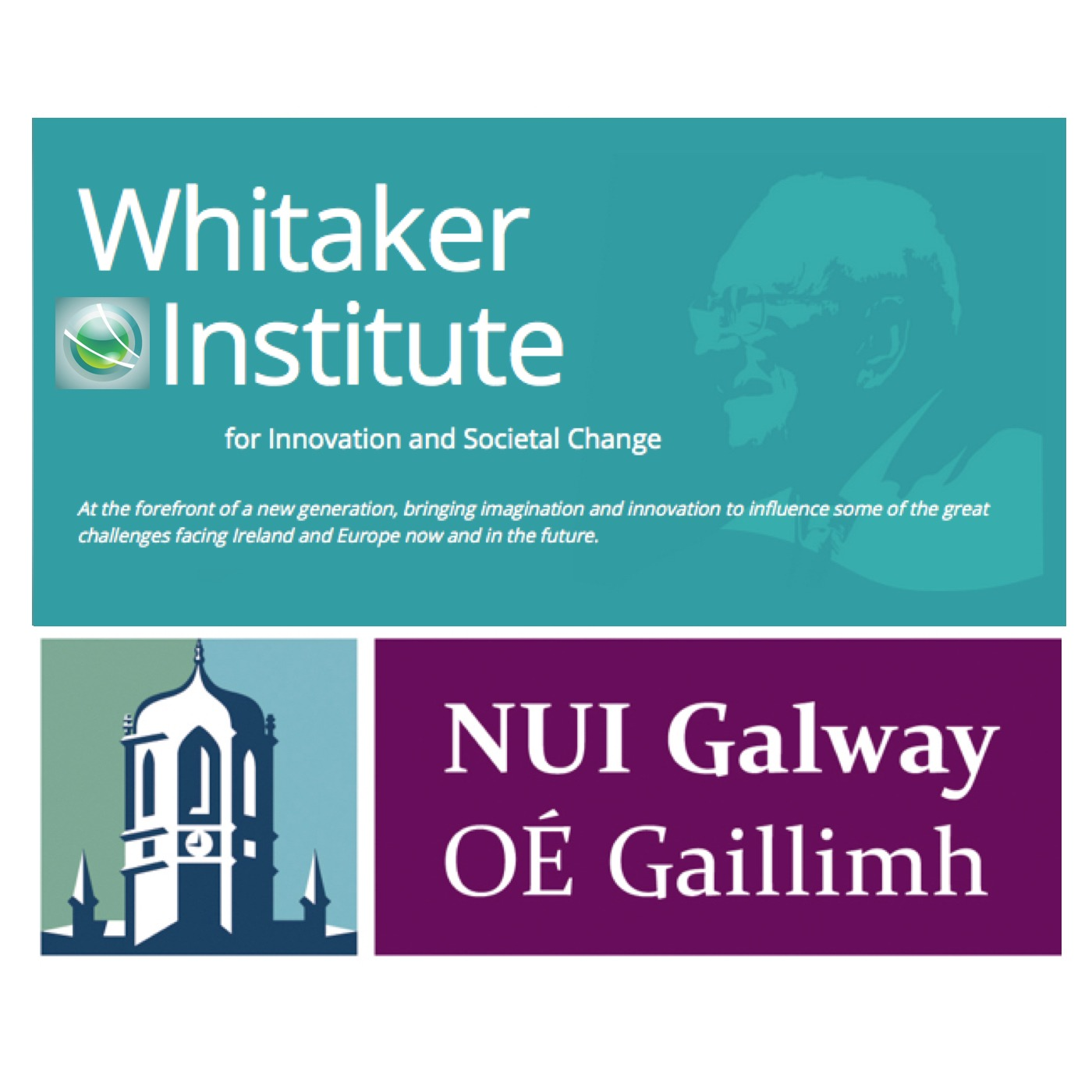 Whitaker Institute (NUI Galway)