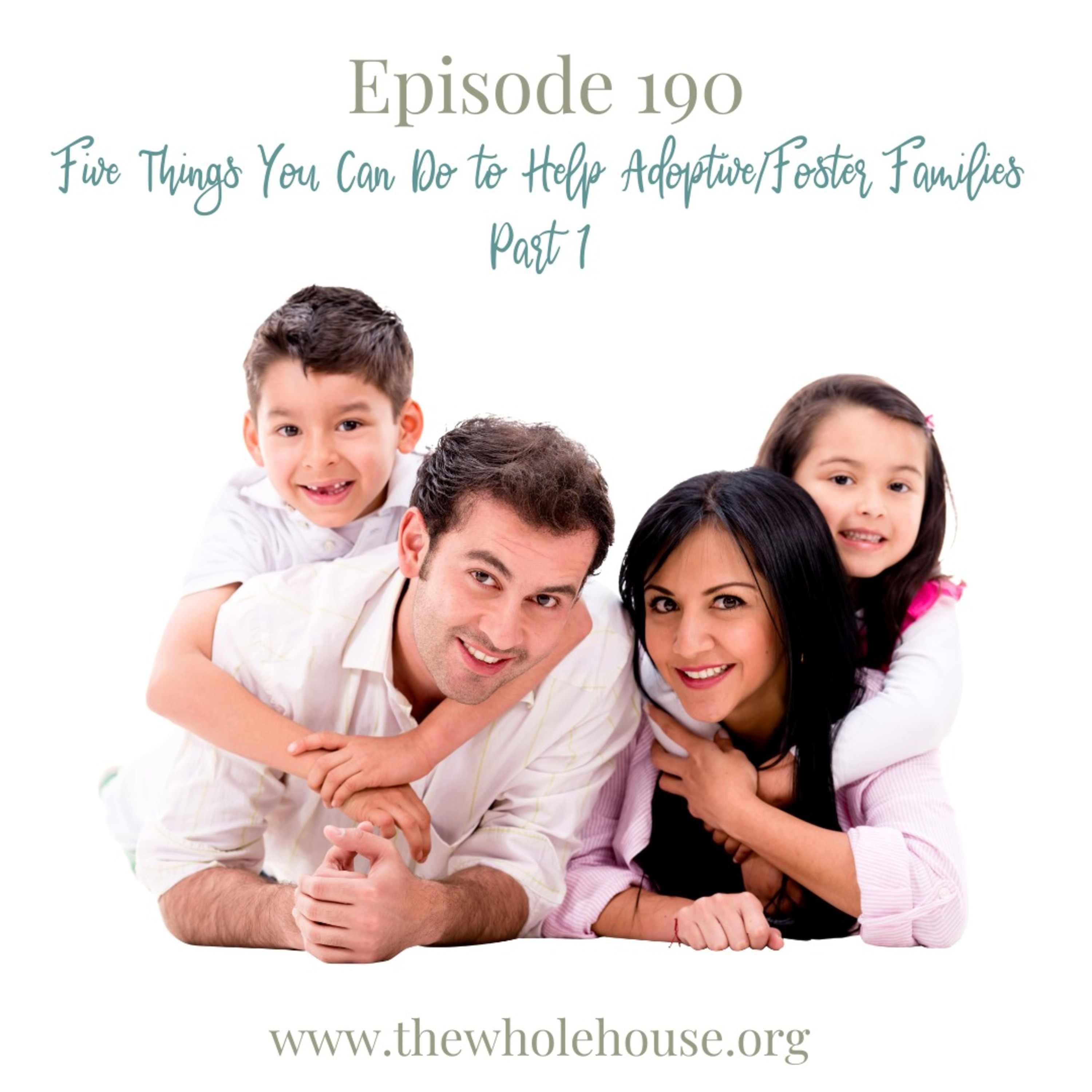 Episode 190 - Five Things You Can Do To Help Adoptive/Foster Families Part 1