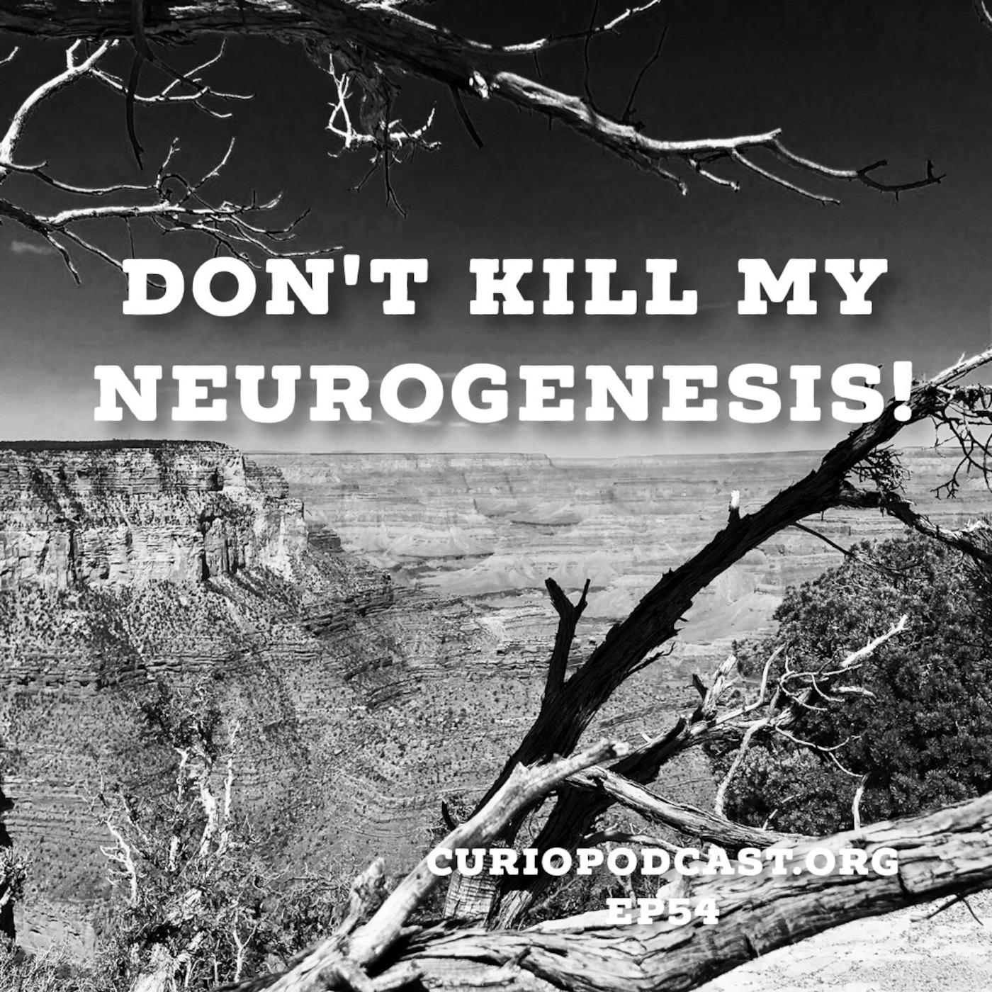 Don't Kill My Neurogenesis!