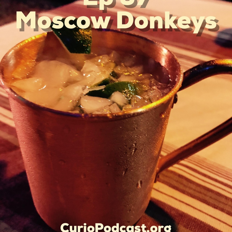 Moscow Donkeys