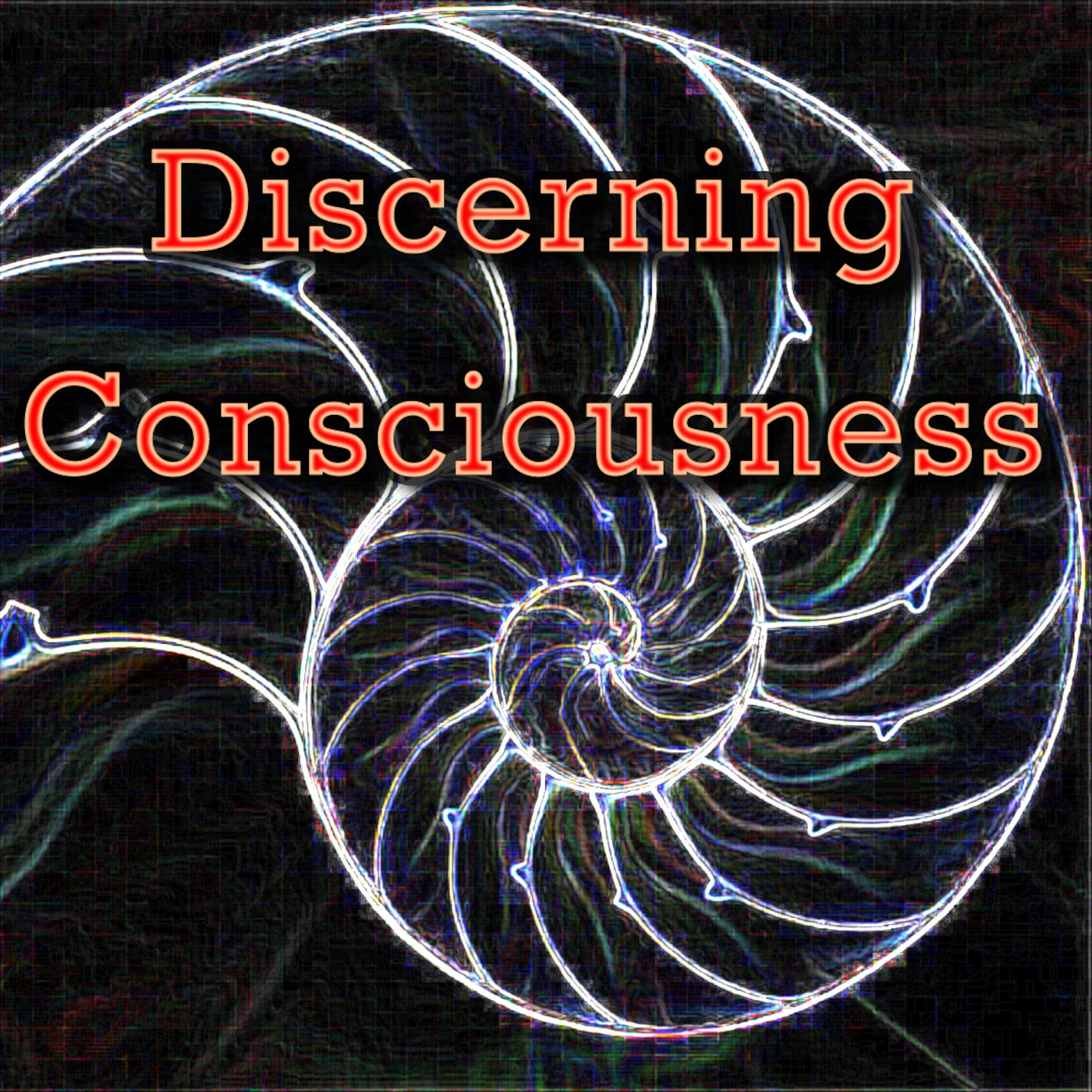 Discerning Consciousness' Podcast