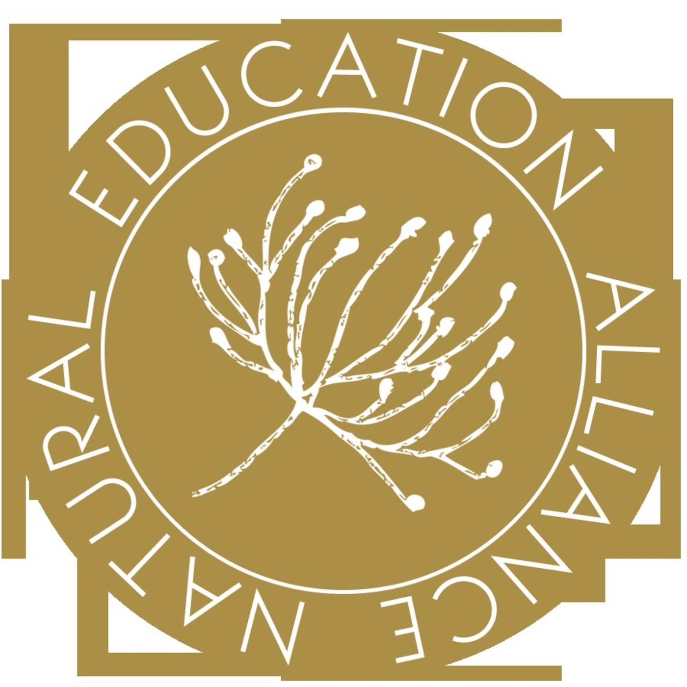 Natural Education Alliance