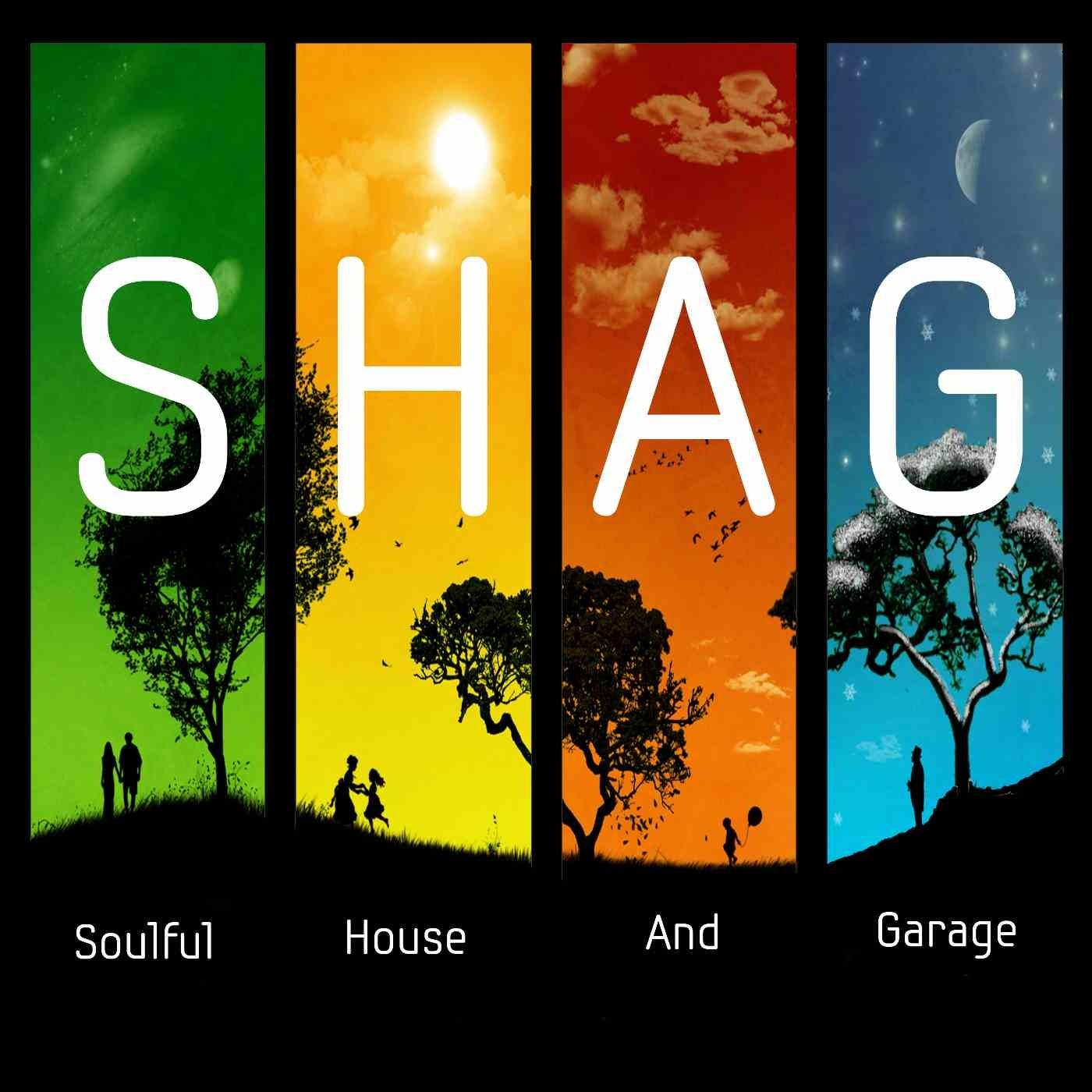 SHAG 7-Jan-2019 - Deep Soulful Afro Mix DJP's S H A G