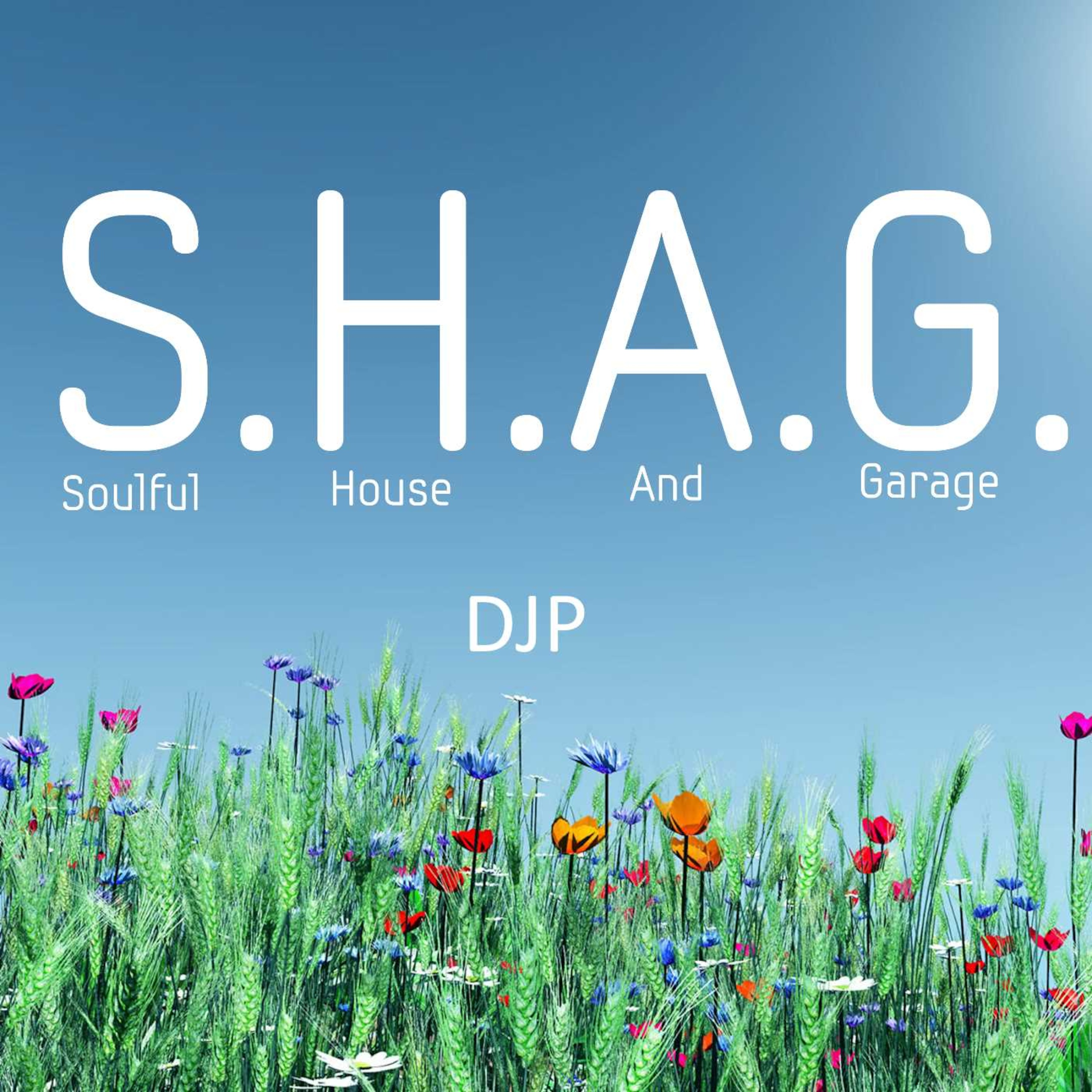 DJP's S.H.A.G. Soulful House And Garage live Radio show on
