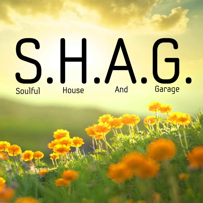 SHAG 30-Mar-2020 DEEP SOULFUL HOUSE