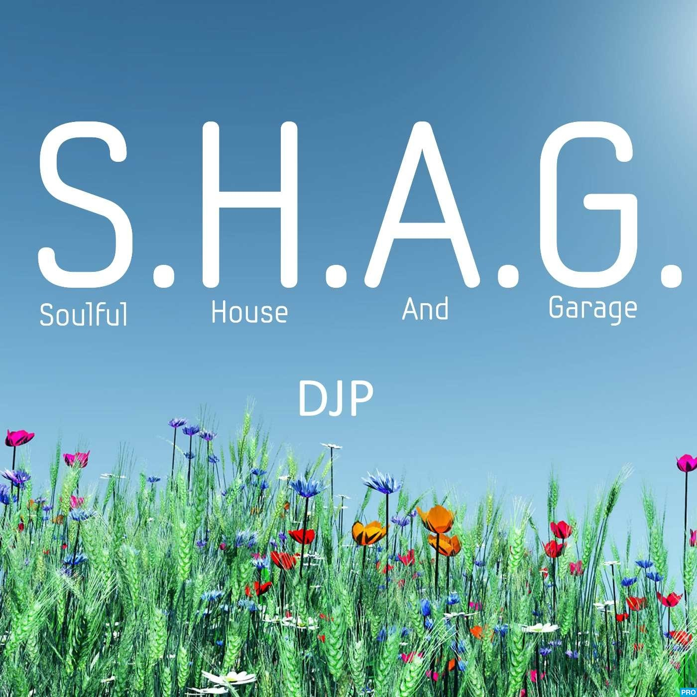 DJP's S.H.A.G. Soulful House And Garage live Radio show on http://PressureRadio.com