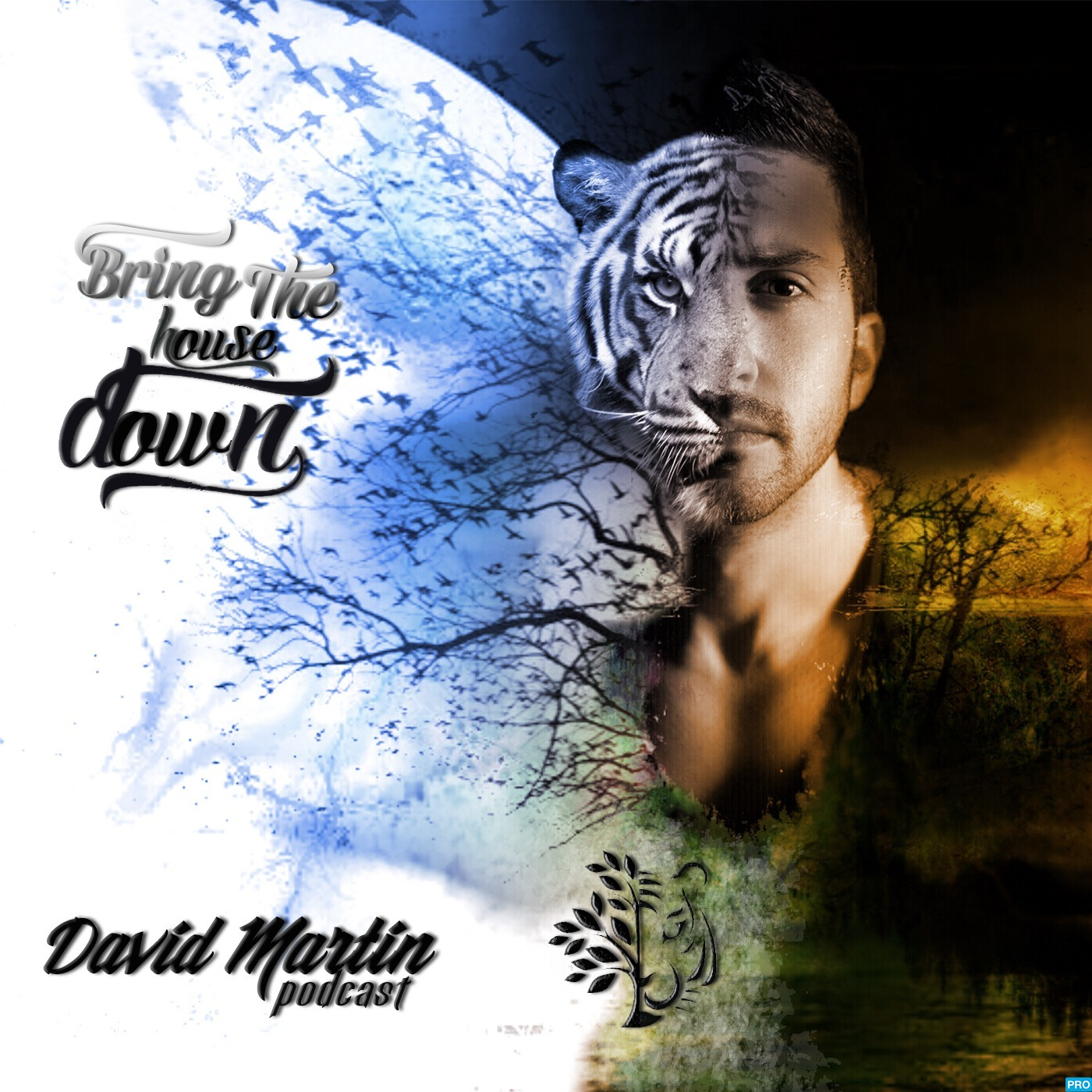 Bring The House Down Podcast by David Martin