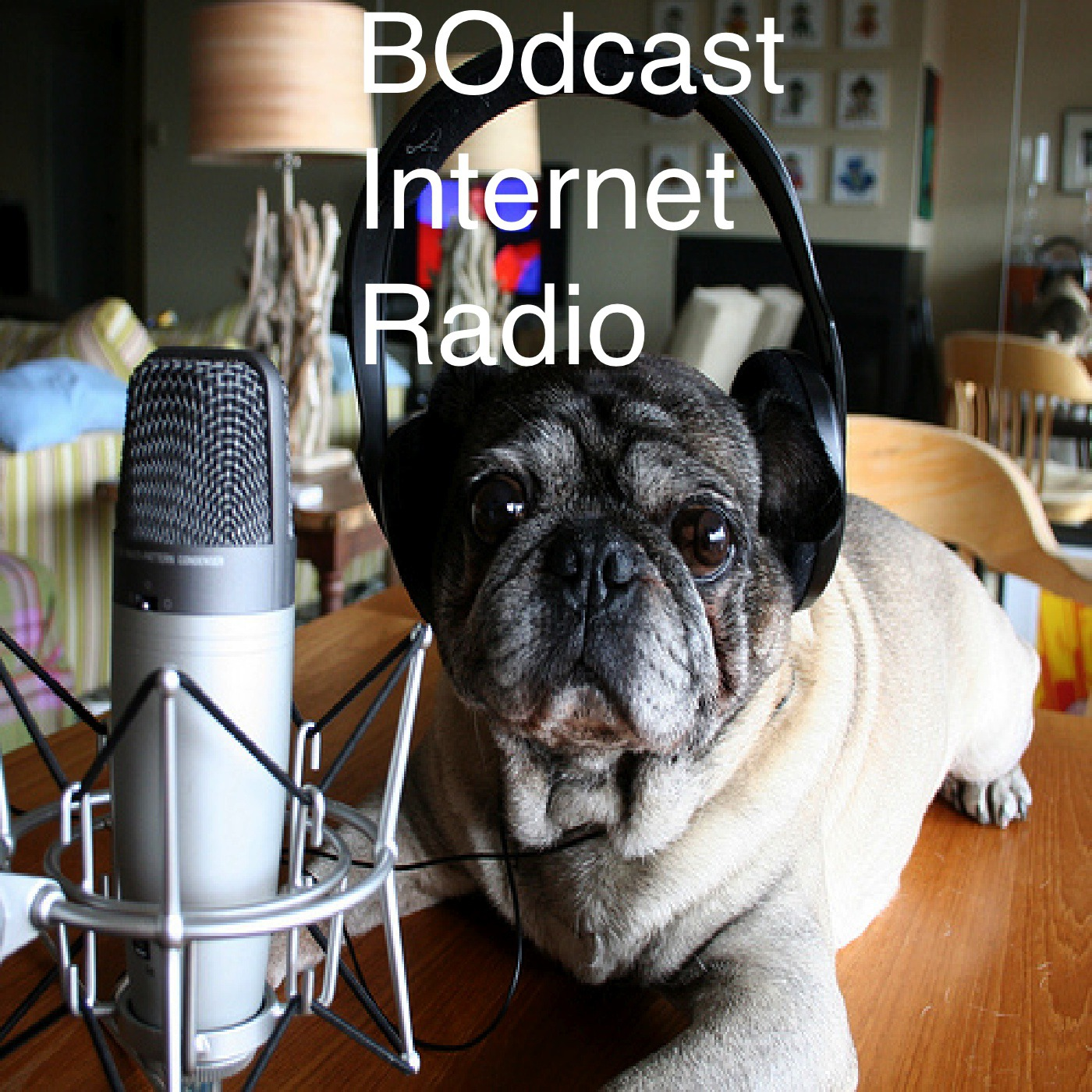 BOdcast Internet Radio