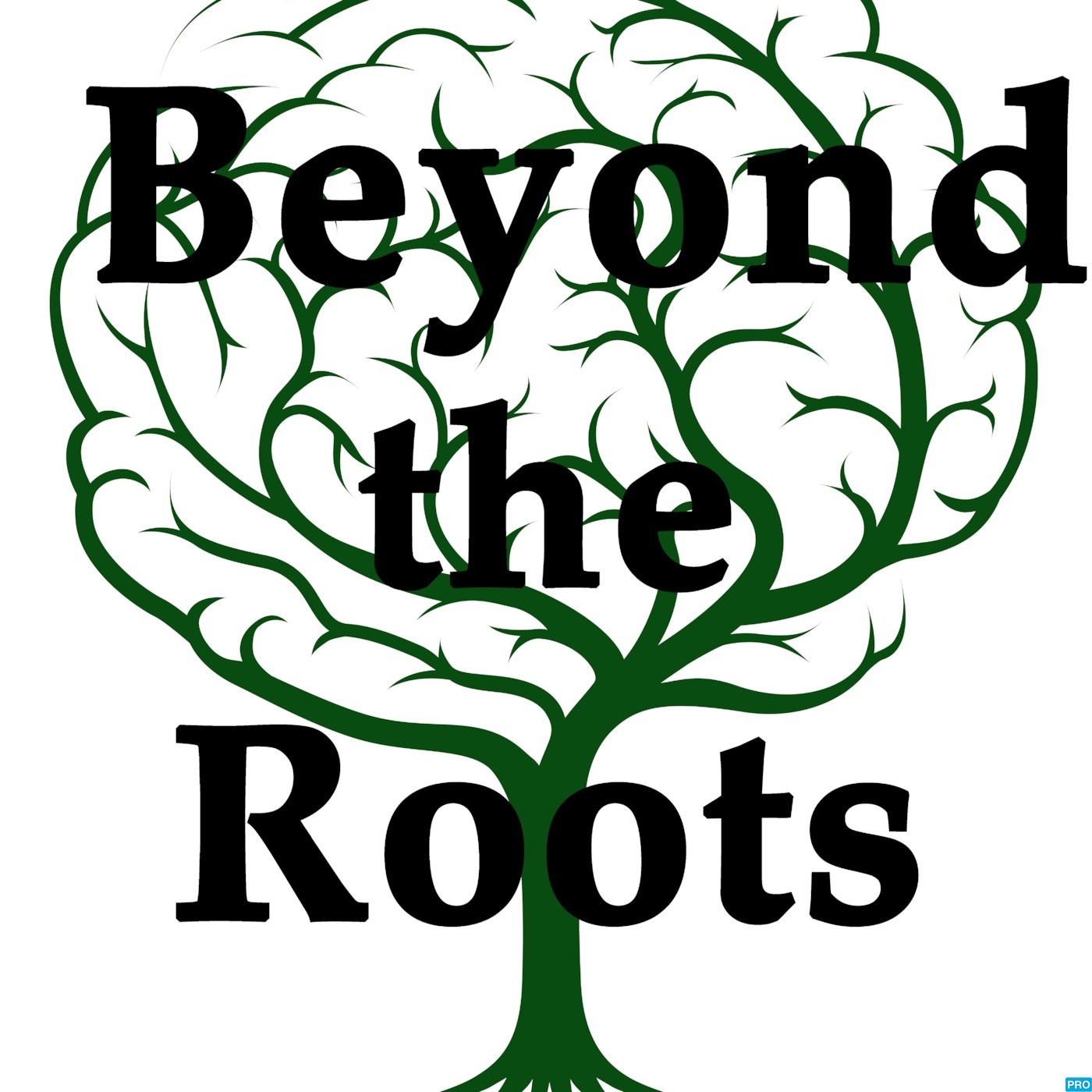 Beyond The Roots