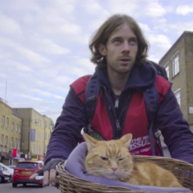 123Movies! Watch A Street Cat Named Bob (2017) Online Free
