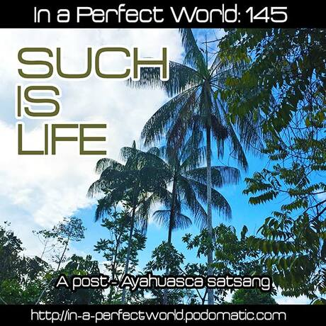 In A Perfect World | Free Podcasts | Podomatic