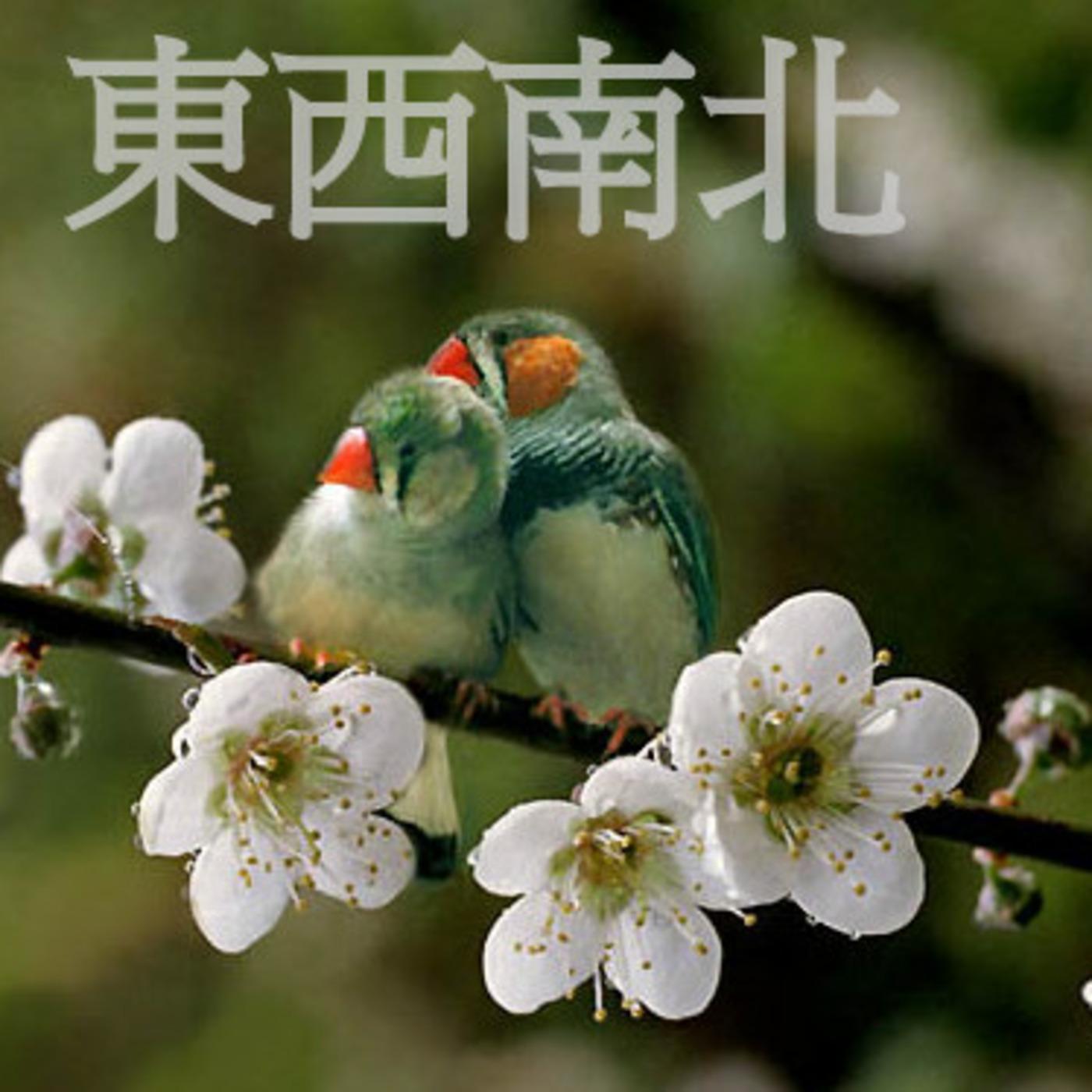 DongXiNanPei radio program's Podcast