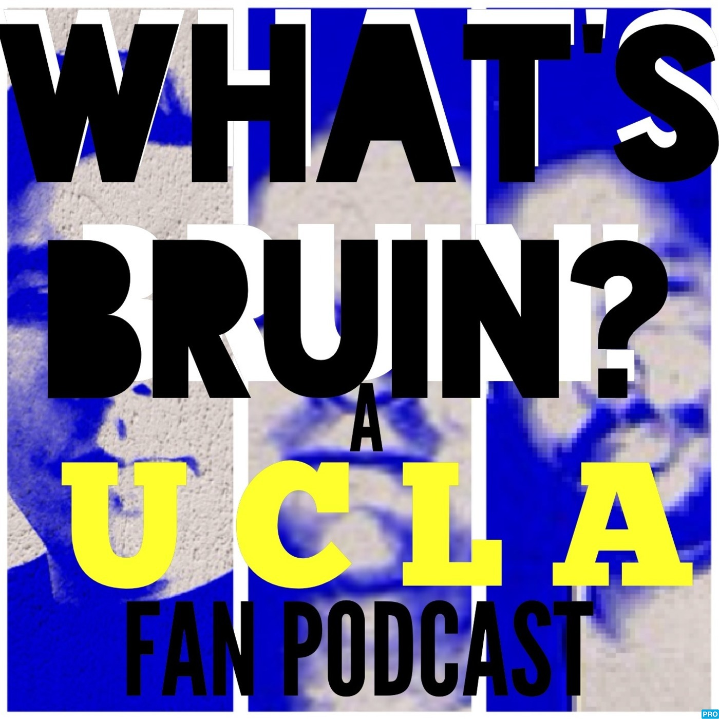 What's Bruin's Podcast